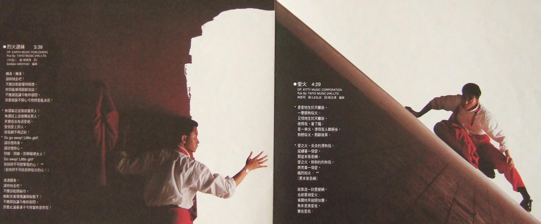 张国荣(迷惑我/当年情/爱火)(3)